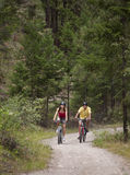 Couple Cycling on Forest Trail Stock Photography