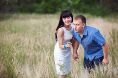 Couple with dandelion Stock Images
