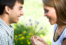 Couple with dandelions Royalty Free Stock Photos