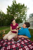 couple date picnic smiling vertical Στοκ εικόνες με δικαίωμα ελεύθερης χρήσης