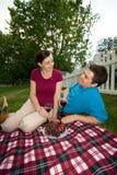 couple date picnic vertical Στοκ Φωτογραφία