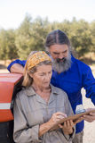 Couple discussing over clipboard in olive farm Royalty Free Stock Image