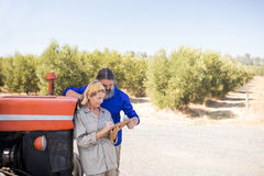 Couple discussing over clipboard in olive farm Stock Photos