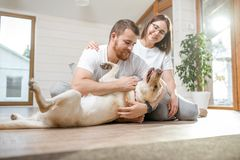 Couple with dog in the house stock image