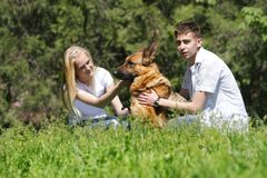 Couple with dog outdoors Royalty Free Stock Image