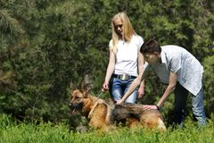 Couple with dog outdoors Royalty Free Stock Photography