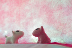 Couple dog on pink background. Stock Photo