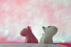 Couple dog on pink background. Royalty Free Stock Photography