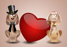 A couple of dog spouses Stock Images