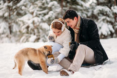 Couple with a dog in winter forest Stock Image