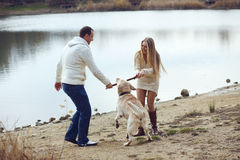 Couple with dog Royalty Free Stock Photography