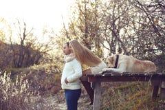 Couple with dog Stock Photos