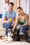 Couple with dog Stock Images