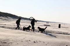 Couple with dogs at Ameland Island, Holland Stock Photos