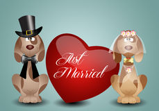 A couple of dogs just married Royalty Free Stock Photos