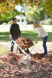 Couple doing yard work in autumn Stock Image