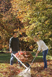 Couple doing yard work in autumn Royalty Free Stock Images