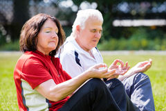 Couple Doing Yoga royalty free stock photography