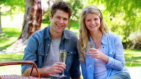 Couple drinking champagne. In a park stock footage