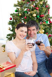 Couple drinking wine at homa at Christmas time Stock Photos