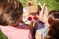 Couple drinking wine while picnicking Royalty Free Stock Photography