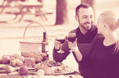 Couple drinking wine and talking on picnic Royalty Free Stock Photos