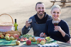 Couple drinking wine and talking on picnic Royalty Free Stock Photography