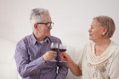 Couple drinking wine and toasting each other. Happy mature couple drinking wine and toasting each other Royalty Free Stock Photography