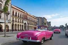 Couple driving by taxi with pink american classic convertible car through streets of Havana, Cuba stock photography
