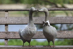 A Couple of Duck on wooden planks. A Couple  of Duck on wooden planks Royalty Free Stock Photography