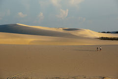 Couple in the dune Stock Photography