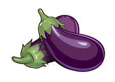 Couple of eggplants Royalty Free Stock Images