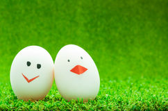 Couple eggs Stock Image