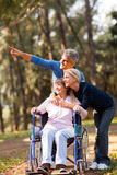 Couple elderly mother. Loving mid age couple taking elderly mother for a walk outdoors Stock Photo