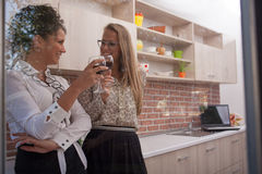 Couple of elegant young women in modern kitchen,drinking wine Stock Photography