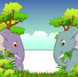 Couple elephant cartoon with forest background and blank sign Royalty Free Stock Images