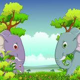Couple elephant cartoon with forest background Stock Images