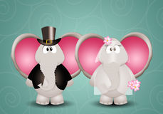 A couple of elephants spouses Royalty Free Stock Photos