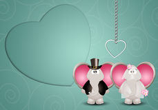 A couple of elephants spouses Royalty Free Stock Images