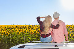 Couple embrace sitting car roof sunflowers field sunrise. Rear view, blue sky outdoor nature Royalty Free Stock Image
