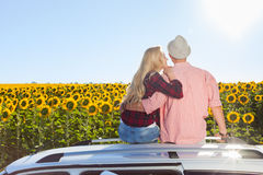 Couple embrace sitting car roof sunflowers field sunrise. Rear view, blue sky outdoor nature Stock Photography