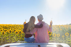 Couple embrace sitting car roof sunflowers field sunrise. Rear view, blue sky outdoor nature Royalty Free Stock Photo