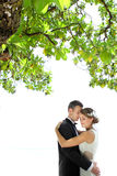 Couple embracing each other under the tree Royalty Free Stock Photo