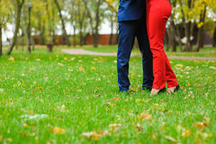 Couple embracing on a green lawn. Couple in autumn park. Fallen leaves on the grass Stock Photo