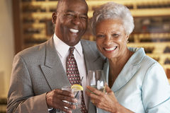 Couple Enjoying A Drink At A Bar Together Royalty Free Stock Photos