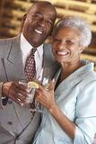 Couple Enjoying A Drink At A Bar Together. Senior Couple Enjoying A Drink At A Bar Together Stock Image
