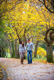 Couple enjoying golden autumn fall season Stock Photo