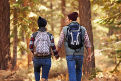 Couple enjoying hike in a forest, back view, California, USA Stock Photo