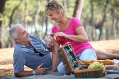 Couple enjoying picnic Royalty Free Stock Photos