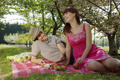 Couple Enjoying Picnic In Park Royalty Free Stock Images